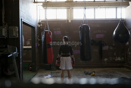 Female boxer standing at punching bags in gritty gymの写真素材 [FYI02319006]