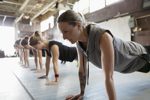 Focused, strong women exercising, doing planks in a row in exercise classの写真素材 [FYI02319026]