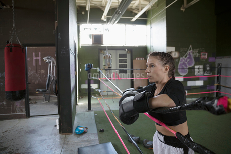 Serious, tough female boxer leaning on rope in boxing ringの写真素材 [FYI02319096]