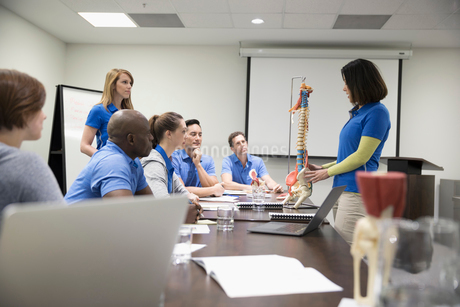 Physiotherapists with spine model training at laptop in conference room meetingの写真素材 [FYI02319188]