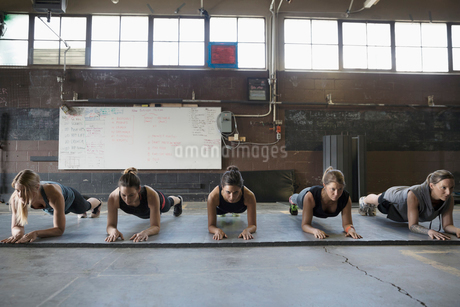 Focused, strong women exercising, doing planks in a row in exercise classの写真素材 [FYI02319259]