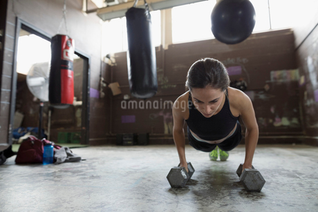Strong female boxer doing plank exercise with dumbbells at gymの写真素材 [FYI02319338]