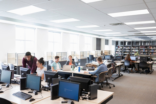 College students studying, researching in libraryの写真素材 [FYI02319597]