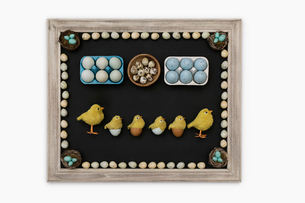 Knolling of Easter eggs, chicks and candiesの写真素材 [FYI02319753]