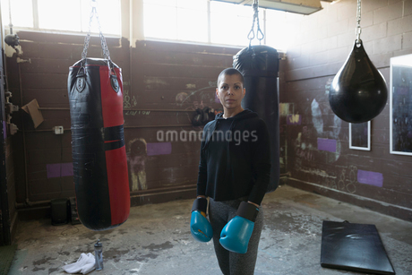 Portrait confident, tough female boxer in boxing gloves near punching bags in gritty gymの写真素材 [FYI02319912]