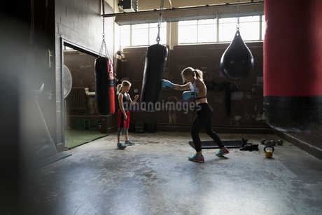 Mother boxer teaching daughter boxing at gymの写真素材 [FYI02320120]