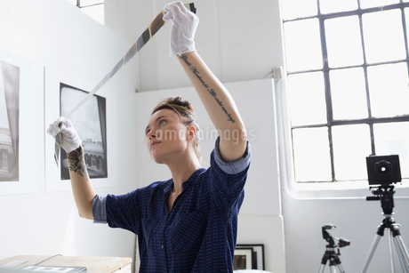 Female photographer with tattoos reviewing photograph film negatives in art studioの写真素材 [FYI02320624]