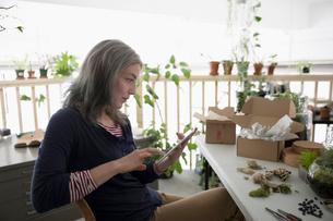 Female shop owner using digital tablet, making succulent plant terrariumsの写真素材 [FYI02320658]