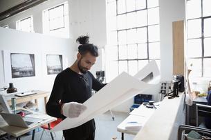 Male photographer examining large photograph print in art studioの写真素材 [FYI02321064]