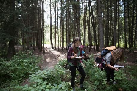 Teenage outdoor school girl students exploring undergrowth in woods taking notes in notebooksの写真素材 [FYI02321286]
