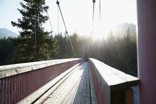 Wooden footbridge in sunny, tranquil woodsの写真素材 [FYI02321546]