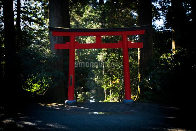 箱根神社の写真素材 [FYI02322530]
