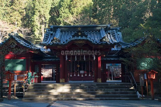 箱根神社の写真素材 [FYI02322549]