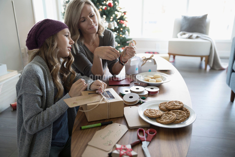 Mother and daughter baking and boxing Christmas cookiesの写真素材 [FYI02324266]