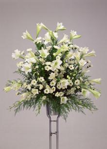 供え花の写真素材 [FYI02324277]