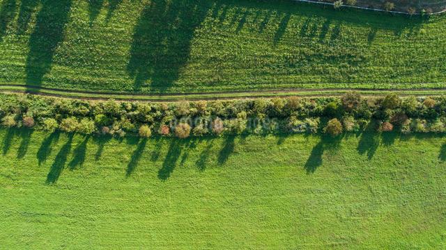 ドローンによる蒜山高原の芝生広場の写真素材 [FYI02324714]