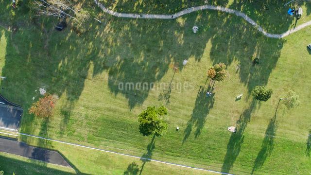 ドローンによる蒜山高原の芝生広場の写真素材 [FYI02324757]