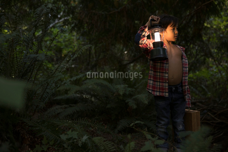 Curious boy with lantern and suitcase exploring woods at nightの写真素材 [FYI02325158]
