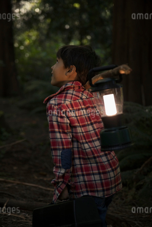 Curious boy with lantern exploring woods at nightの写真素材 [FYI02325380]