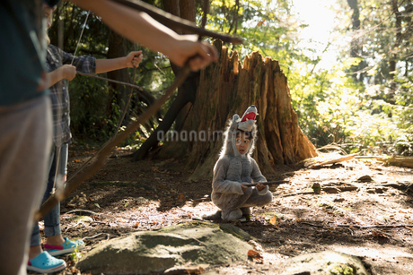 Bow and arrows aiming at boy in wolf costume in sunny woodsの写真素材 [FYI02325461]