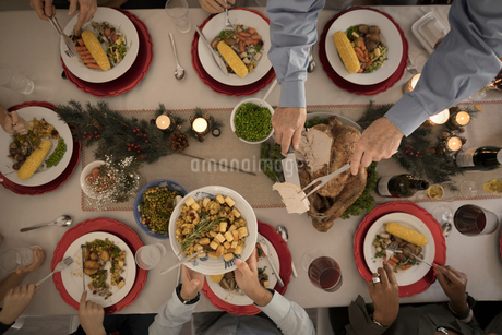 Overhead view family carving and serving turkey at Christmas dinner tableの写真素材 [FYI02325488]