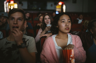 Serious tween girl watching movie, eating popcorn in dark movie theaterの写真素材 [FYI02326086]