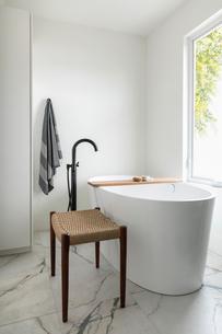 Modern home showcase bathroom with soaking tubの写真素材 [FYI02326835]