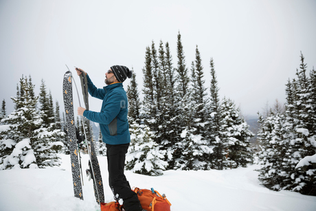 Male skier checking and preparing skis in remote snowの写真素材 [FYI02326870]