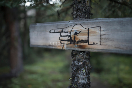 Rustic, wooden signpost with pointing finger on tree trunk in woodsの写真素材 [FYI02326913]