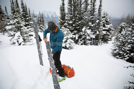 Male skier checking and preparing skis in remote snowの写真素材 [FYI02326927]