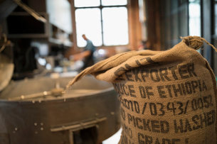 Burlap sack of Ethiopian coffee beans next to coffee roasterの写真素材 [FYI02327655]