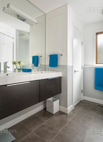 Home showcase modern bathroom sinkの写真素材 [FYI02328064]