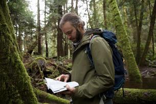 Male hiker reading trail guidebook in woodsの写真素材 [FYI02328553]