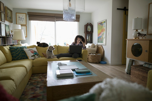 Teenage girl with dog and cat using laptop on sofaの写真素材 [FYI02328569]