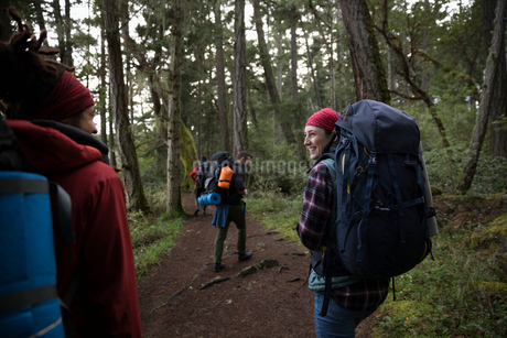 Friends backpacking in woodsの写真素材 [FYI02328806]