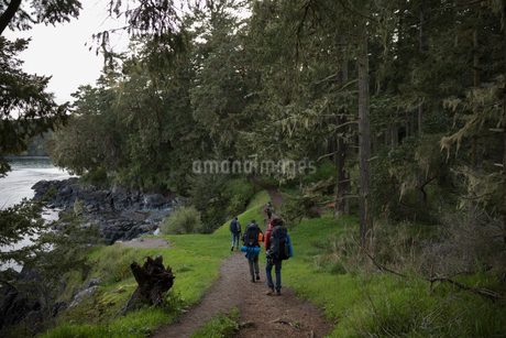 Friends backpacking on trail in woodsの写真素材 [FYI02328966]