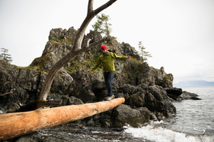 Male backpacker crossing fallen log over oceanの写真素材 [FYI02329058]