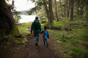 Affectionate father and son backpacking, holding hands in woodsの写真素材 [FYI02329936]