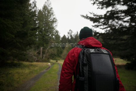 Man backpacking on remote trail in woodsの写真素材 [FYI02330047]