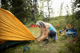 Mature woman setting up tent at forest campsiteの写真素材 [FYI02331031]