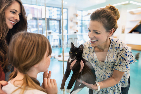 Woman showing cat to mother and daughter in cat cafeの写真素材 [FYI02332912]
