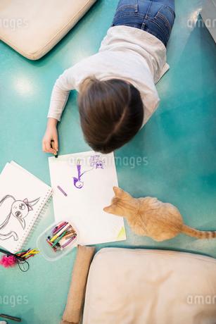 Girl drawing on floor in cat cafeの写真素材 [FYI02333309]