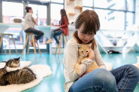 Girl cuddling kitten in cat cafeの写真素材 [FYI02333570]