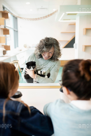 Smiling woman showing cat to girls in cat cafeの写真素材 [FYI02333589]