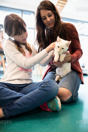Mother and daughter petting kitten in cat cafeの写真素材 [FYI02333733]