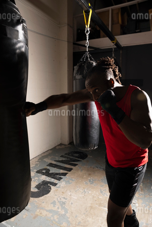 Male boxer boxing, using punching bag in gymの写真素材 [FYI02333910]