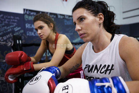 Focused, tough female boxers resting in gymの写真素材 [FYI02333921]