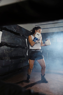 Determined, tough female boxer training in boxing ringの写真素材 [FYI02333934]