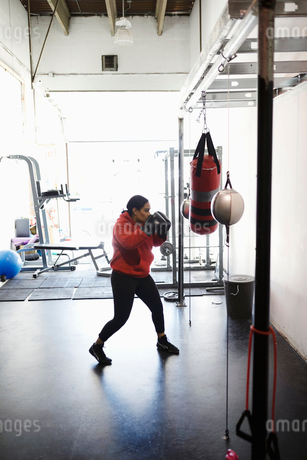 Dedicated female boxer training at punching bag in gymの写真素材 [FYI02333972]