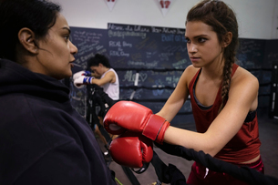 Female boxers talking in gymの写真素材 [FYI02334016]
